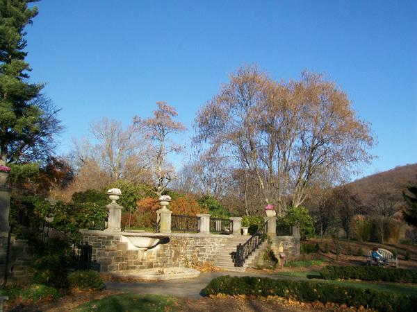 Summer Garden in Autumn