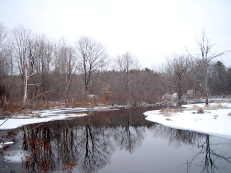 Winter Along the Pequannock River